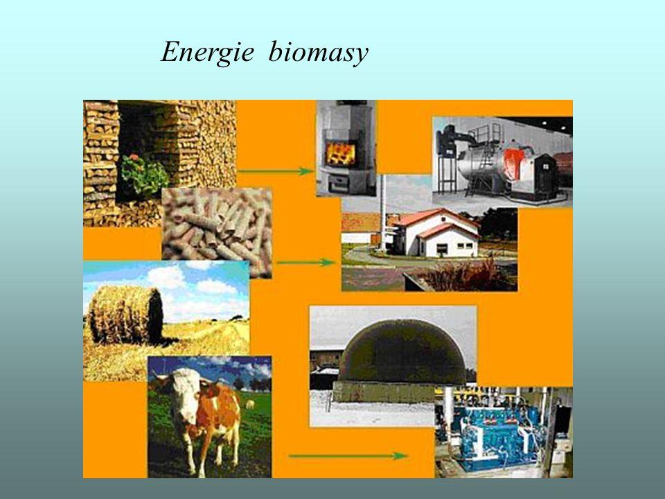 Energie biomasy