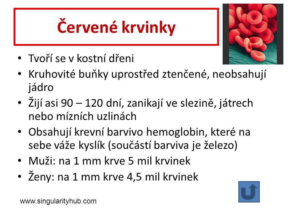 Červené krvinky Tvoří se v kostní dřeni Kruhovité buňky uprostřed ztenčené, neobsahují jádro Žijí asi 90 – 120 dní, zanikají ve slezině, játrech nebo mízních uzlinách Obsahují krevní barvivo hemoglobin, které na sebe váže kyslík (součástí barviva je železo) Muži: na 1 mm krve 5 mil krvinek Ženy: na 1 mm krve 4,5 mil krvinek www.singularityhub.com