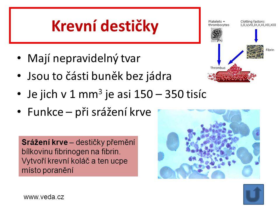 Krevní destičky Mají nepravidelný tvar Jsou to části buněk bez jádra Je jich v 1 mm 3 je asi 150 – 350 tisíc Funkce – při srážení krve Srážení krve – destičky přemění bílkovinu fibrinogen na fibrin.