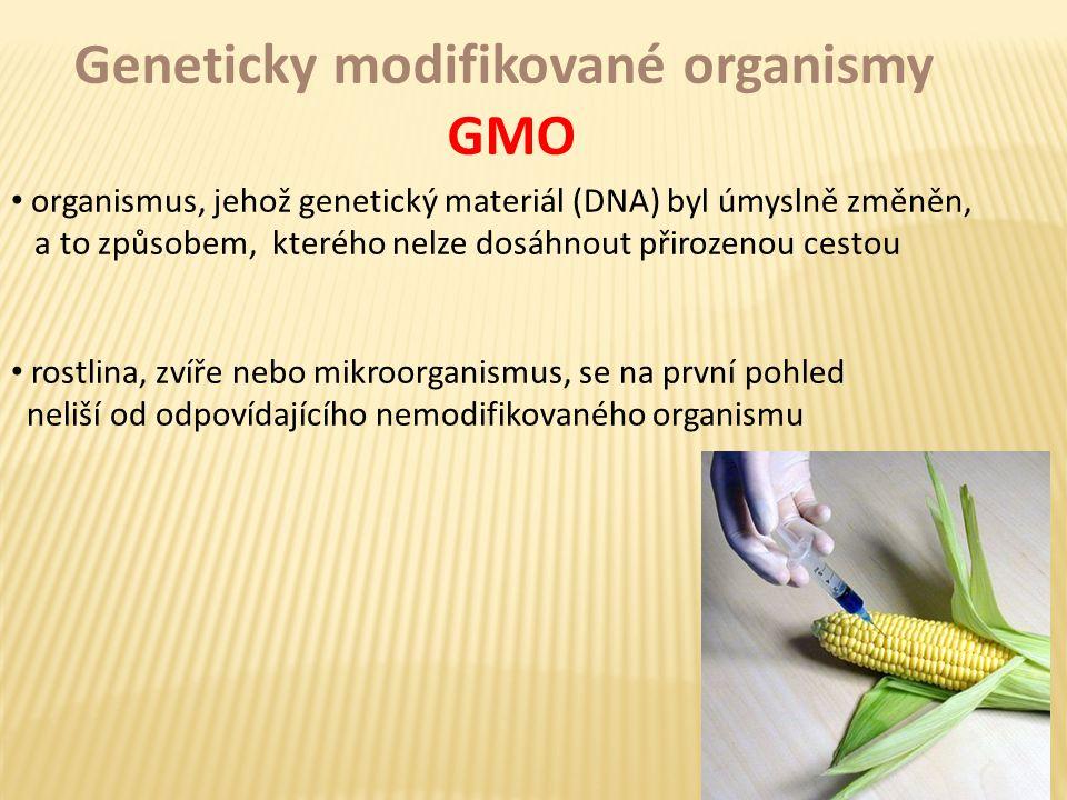 Geneticky modifikované organismy GMO organismus, jehož genetický materiál (DNA) byl úmyslně změněn, a to způsobem, kterého nelze dosáhnout přirozenou cestou rostlina, zvíře nebo mikroorganismus, se na první pohled neliší od odpovídajícího nemodifikovaného organismu