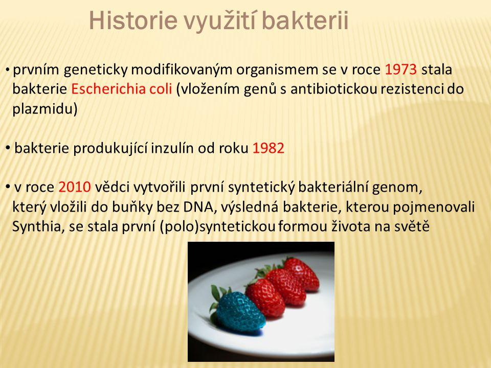 prvním geneticky modifikovaným organismem se v roce 1973 stala bakterie Escherichia coli (vložením genů s antibiotickou rezistenci do plazmidu) bakterie produkující inzulín od roku 1982 v roce 2010 vědci vytvořili první syntetický bakteriální genom, který vložili do buňky bez DNA, výsledná bakterie, kterou pojmenovali Synthia, se stala první (polo)syntetickou formou života na světě Historie využití bakterii