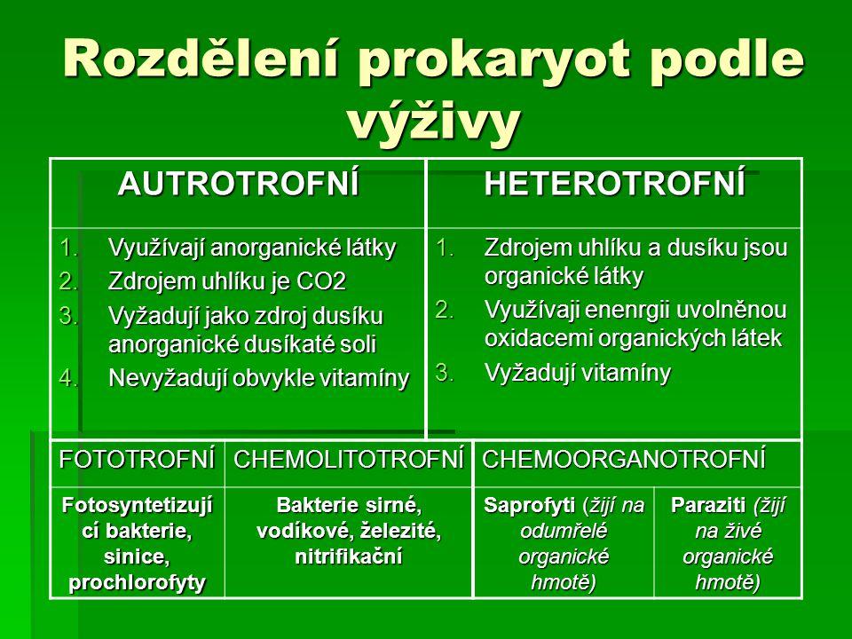 Rozdělení prokaryot podle výživy AUTROTROFNÍHETEROTROFNÍ 1.Využívají anorganické látky 2.Zdrojem uhlíku je CO2 3.Vyžadují jako zdroj dusíku anorganick