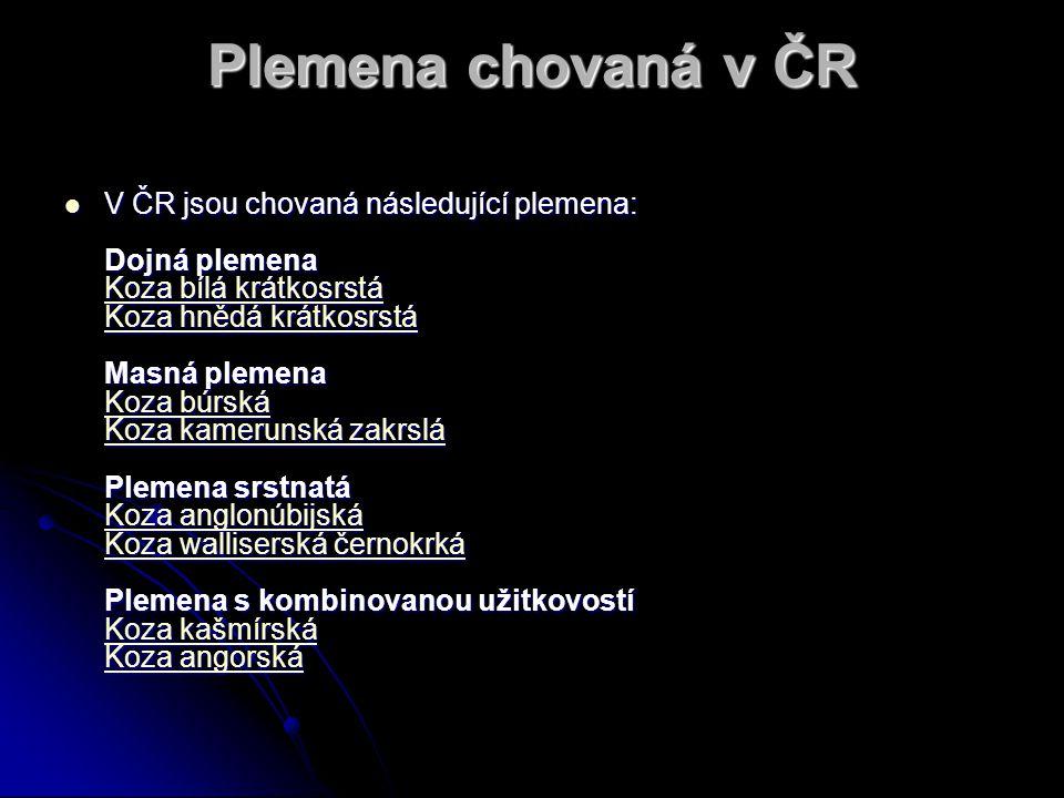Plemena chovaná v ČR V ČR jsou chovaná následující plemena: Dojná plemena Koza bílá krátkosrstá Koza hnědá krátkosrstá Masná plemena Koza búrská Koza