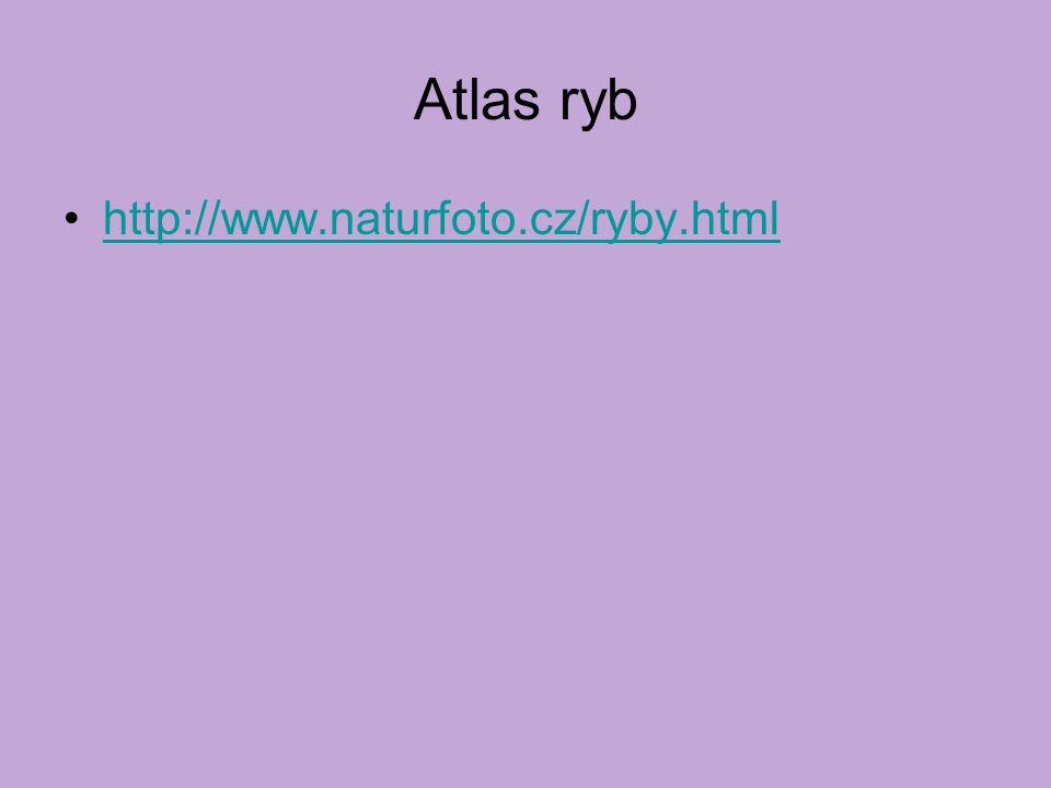 Atlas ryb http://www.naturfoto.cz/ryby.html