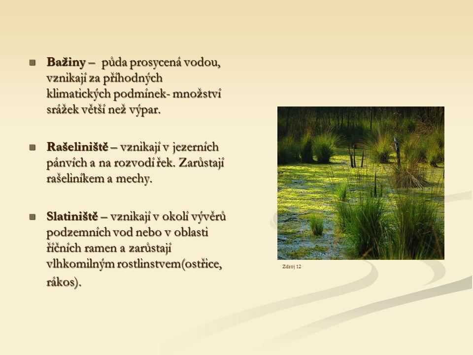 Bažiny – půda prosycená vodou, vznikají za příhodných klimatických podmínek- množství srážek větší než výpar. Bažiny – půda prosycená vodou, vznikají