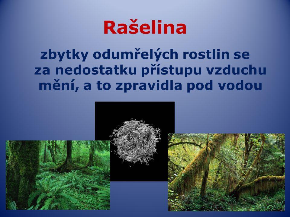 Rašelina zbytky odumřelých rostlin se za nedostatku přístupu vzduchu mění, a to zpravidla pod vodou