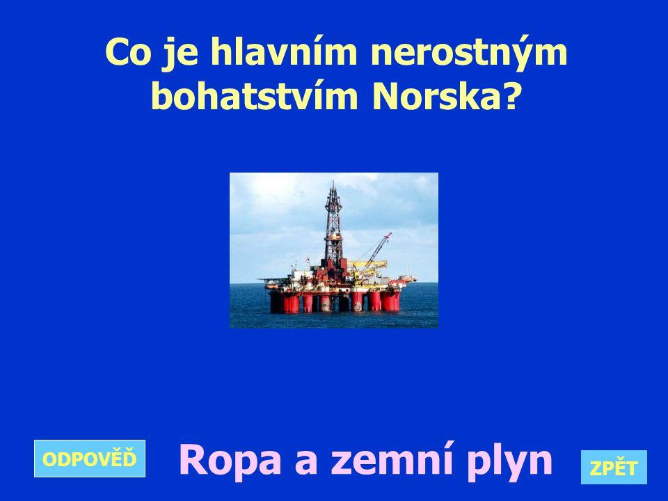 Co je hlavním nerostným bohatstvím Norska Ropa a zemní plyn ZPĚT ODPOVĚĎ
