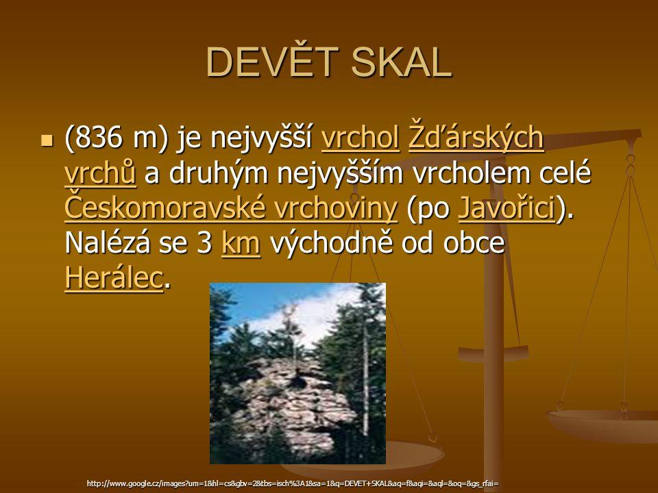 DEVĚT SKAL (836 m) je nejvyšší vrchol Žďárských vrchů a druhým nejvyšším vrcholem celé Českomoravské vrchoviny (po Javořici). Nalézá se 3 km východně