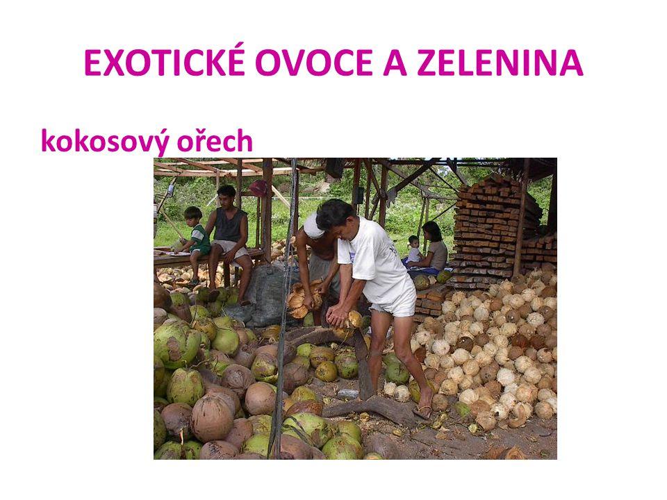 EXOTICKÉ OVOCE A ZELENINA kokosový ořech