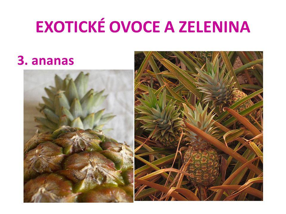 EXOTICKÉ OVOCE A ZELENINA 3. ananas