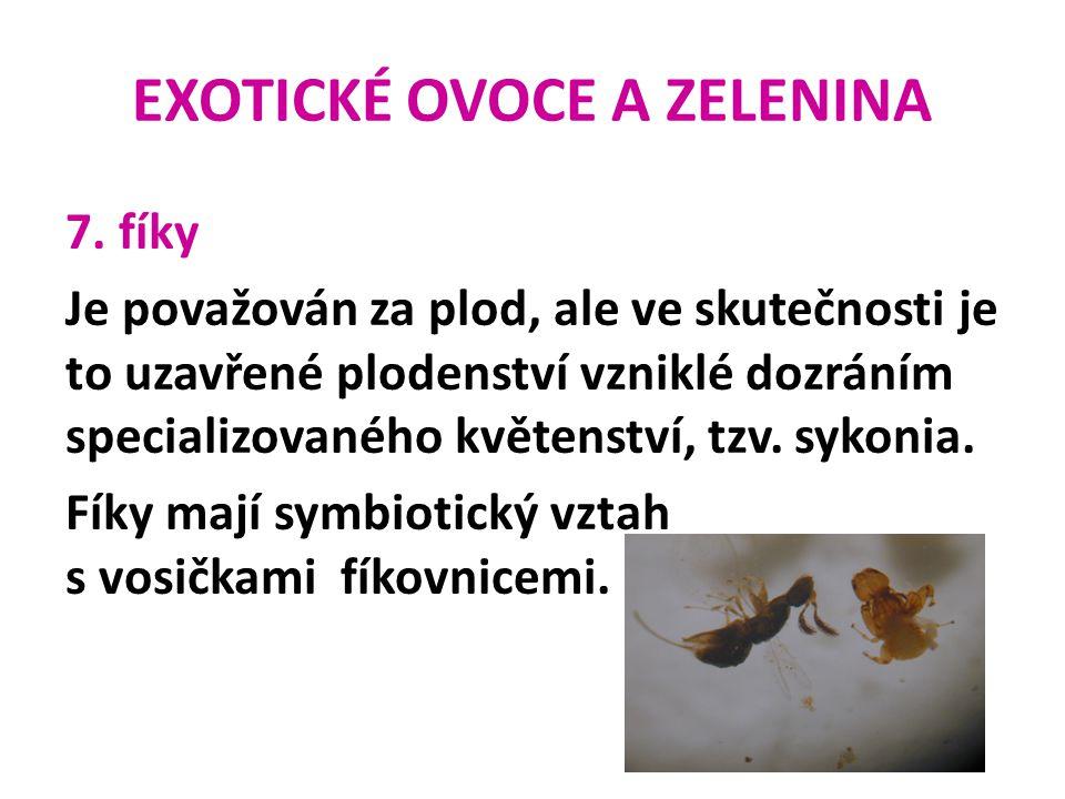 EXOTICKÉ OVOCE A ZELENINA 7. fíky Je považován za plod, ale ve skutečnosti je to uzavřené plodenství vzniklé dozráním specializovaného květenství, tzv