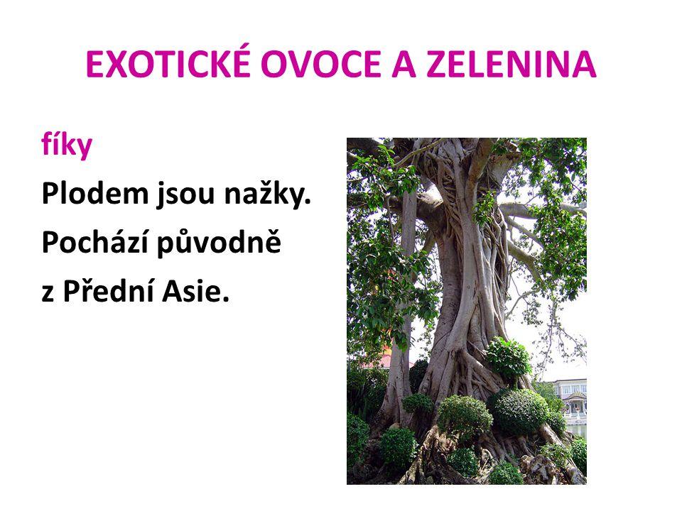 EXOTICKÉ OVOCE A ZELENINA fíky Plodem jsou nažky. Pochází původně z Přední Asie.