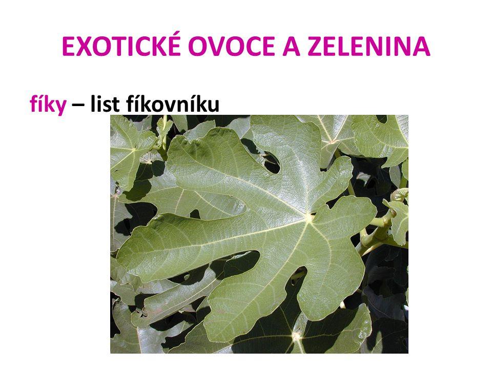 EXOTICKÉ OVOCE A ZELENINA fíky – list fíkovníku