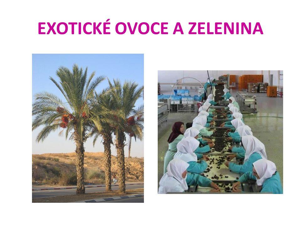 EXOTICKÉ OVOCE A ZELENINA 7.