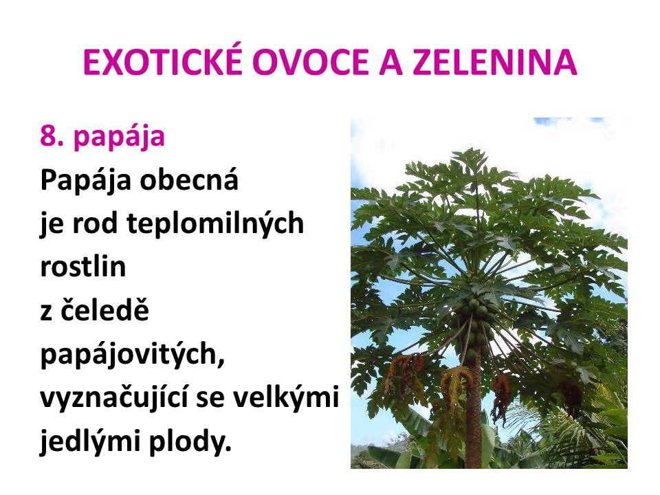 EXOTICKÉ OVOCE A ZELENINA 8. papája Papája obecná je rod teplomilných rostlin z čeledě papájovitých, vyznačující se velkými jedlými plody.
