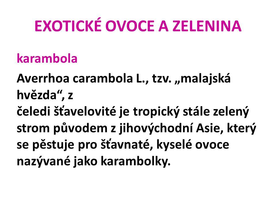 """EXOTICKÉ OVOCE A ZELENINA karambola Averrhoa carambola L., tzv. """"malajská hvězda"""", z čeledi šťavelovité je tropický stále zelený strom původem z jihov"""