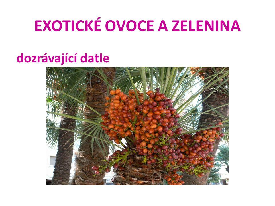 EXOTICKÉ OVOCE A ZELENINA banán