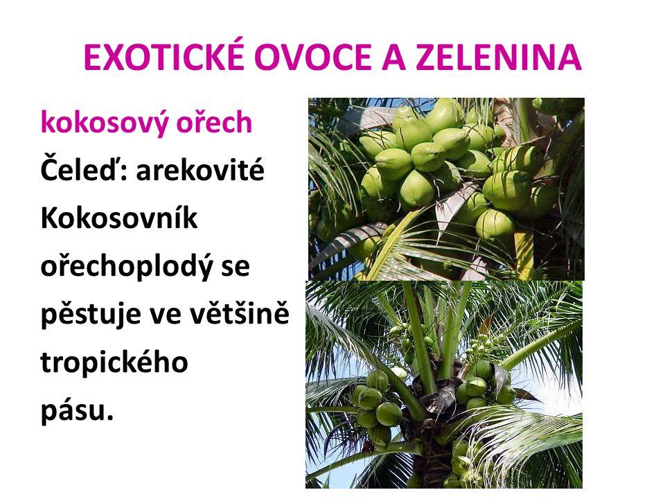 EXOTICKÉ OVOCE A ZELENINA kokosový ořech Čeleď: arekovité Kokosovník ořechoplodý se pěstuje ve většině tropického pásu.