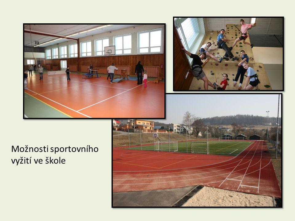 Možnosti sportovního vyžití ve škole