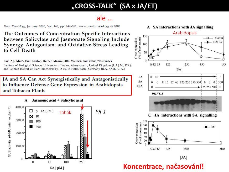 """Tabák Arabidopsis ale … """"CROSS-TALK"""" (SA x JA/ET) Koncentrace, načasování! PR-1"""