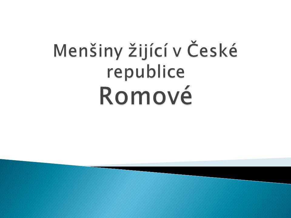  pochází z Indie  dělí se do řasy skupin, podskupin a rodů: ◦ Romové slovenští ◦ Romové olašští ◦ Maďarští Romové ◦ Čeští Romové ◦ Moravští Romové