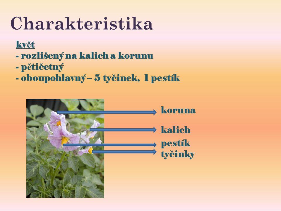 Charakteristika kv ě t - rozlišený na kalich a korunu - p ě tičetný - oboupohlavný – 5 tyčinek, 1 pestík koruna kalich pestík tyčinky