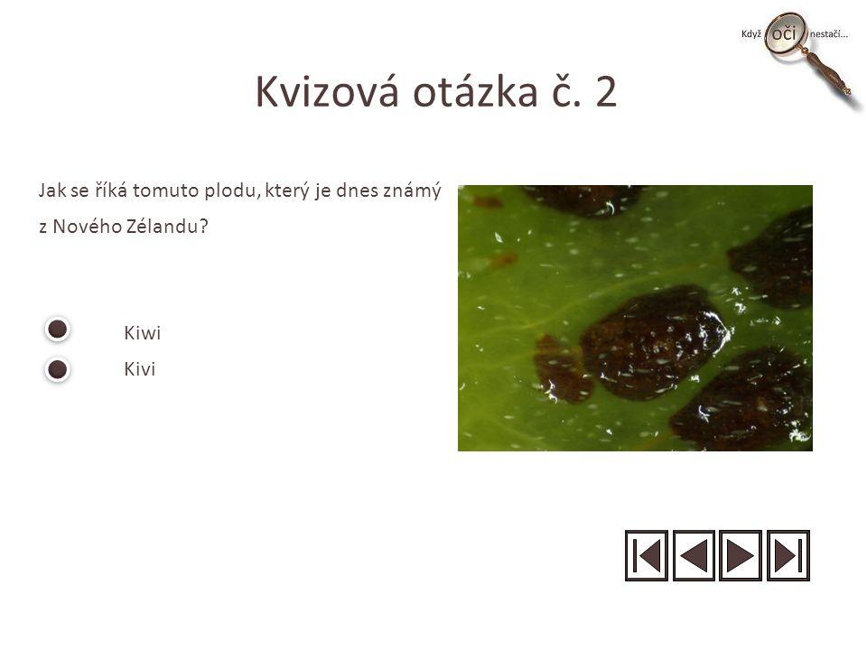 Kvizová otázka č. 2 Jak se říká tomuto plodu, který je dnes známý z Nového Zélandu? Kiwi Kivi