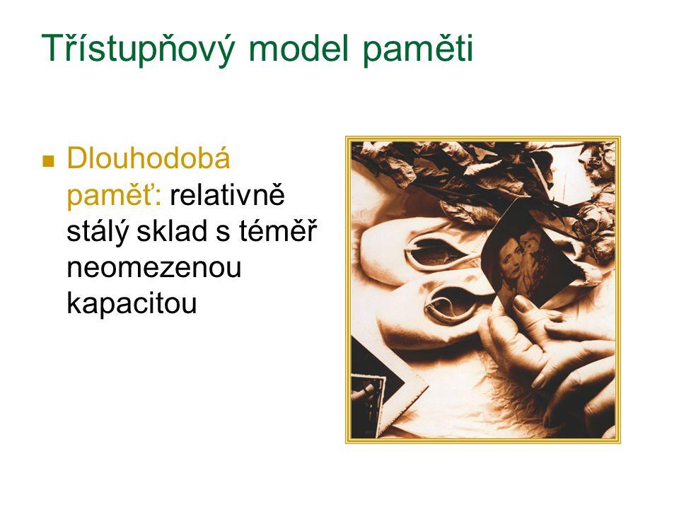 Třístupňový model paměti Dlouhodobá paměť: relativně stálý sklad s téměř neomezenou kapacitou