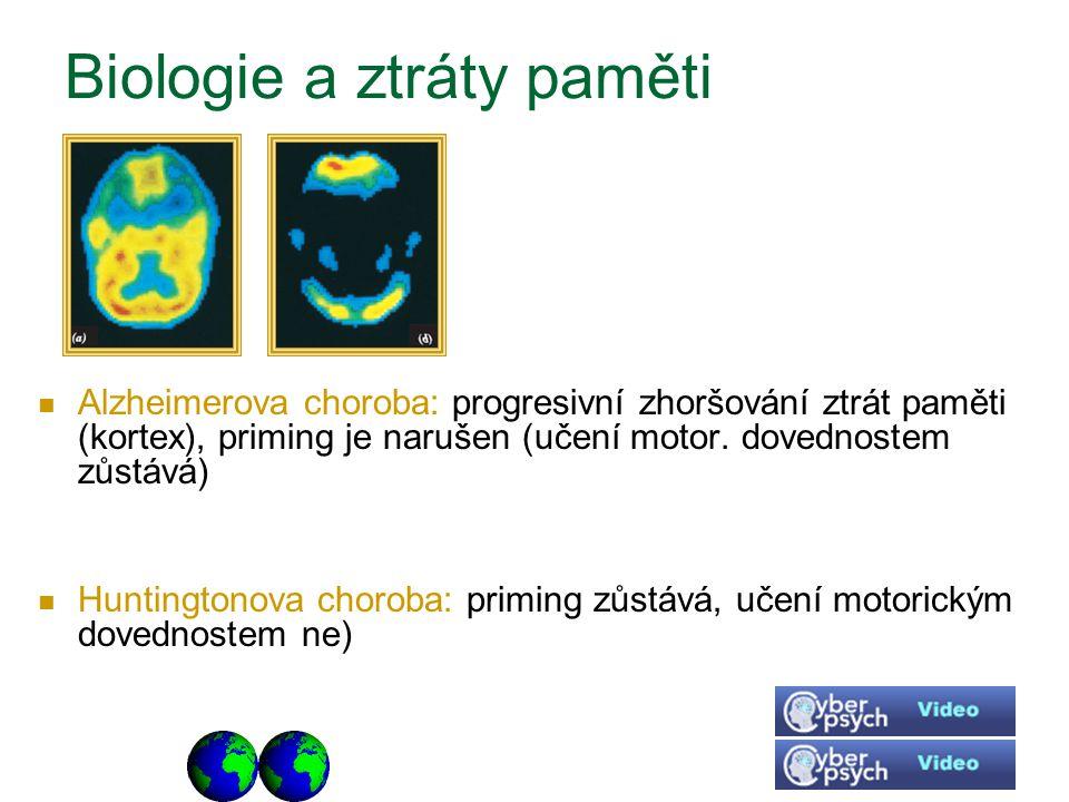 Biologie a ztráty paměti Alzheimerova choroba: progresivní zhoršování ztrát paměti (kortex), priming je narušen (učení motor. dovednostem zůstává) Hun