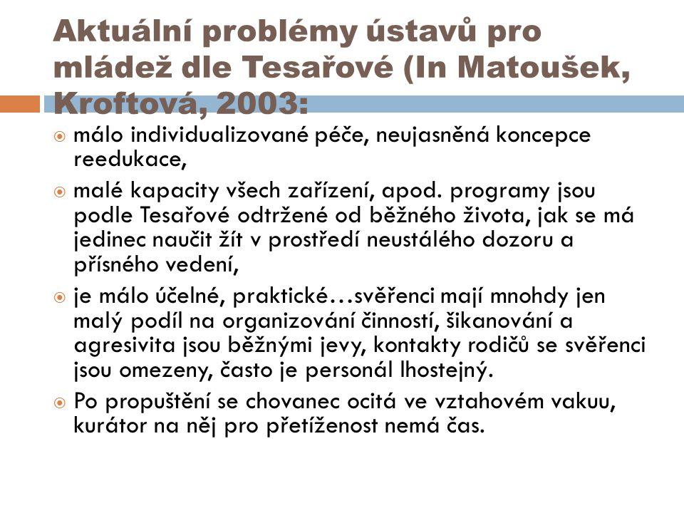 Aktuální problémy ústavů pro mládež dle Tesařové (In Matoušek, Kroftová, 2003:  málo individualizované péče, neujasněná koncepce reedukace,  malé ka