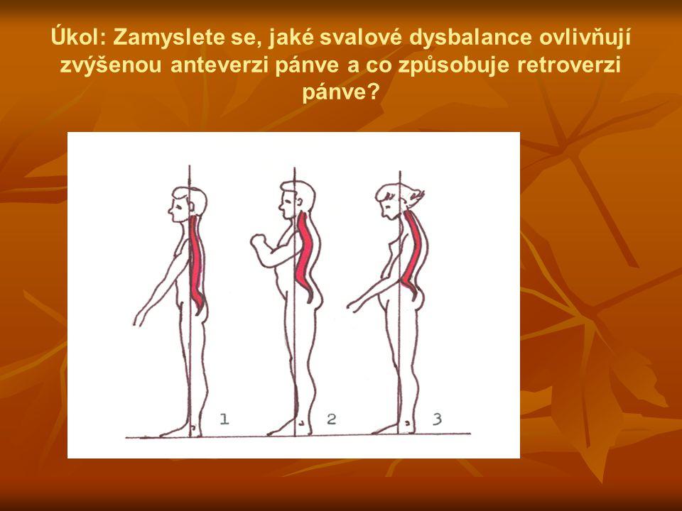 Úkol: Zamyslete se, jaké svalové dysbalance ovlivňují zvýšenou anteverzi pánve a co způsobuje retroverzi pánve?