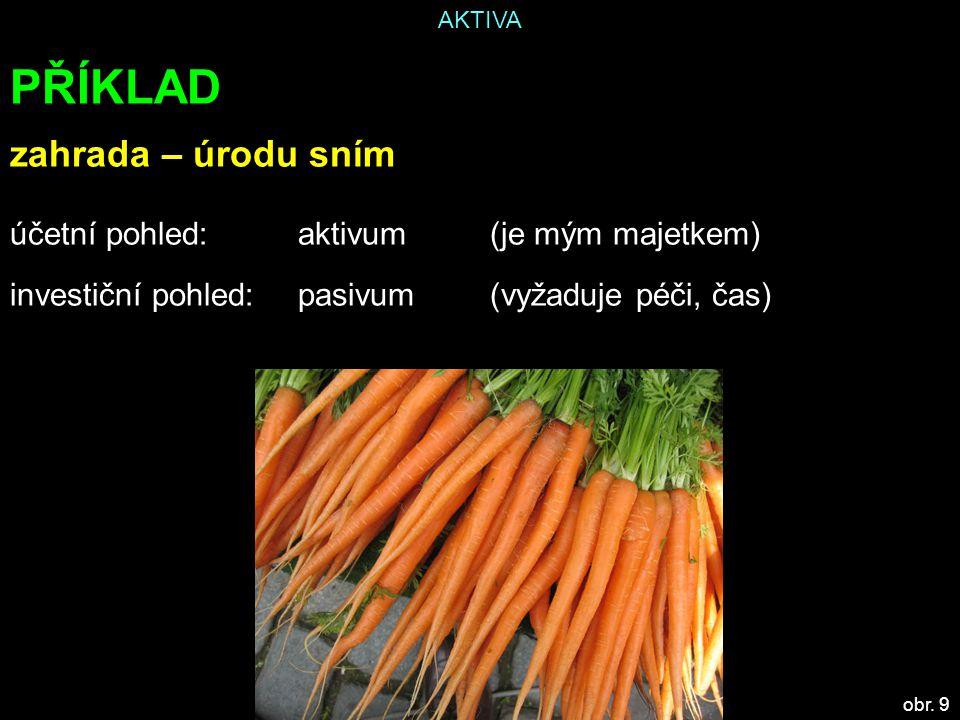 AKTIVA PŘÍKLAD zahrada – úrodu sním účetní pohled: aktivum(je mým majetkem) investiční pohled:pasivum(vyžaduje péči, čas) obr.
