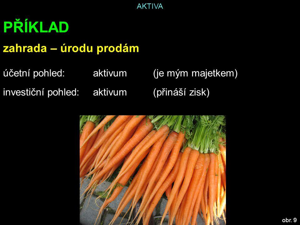 AKTIVA PŘÍKLAD zahrada – úrodu prodám účetní pohled: aktivum(je mým majetkem) investiční pohled:aktivum(přináší zisk) obr.
