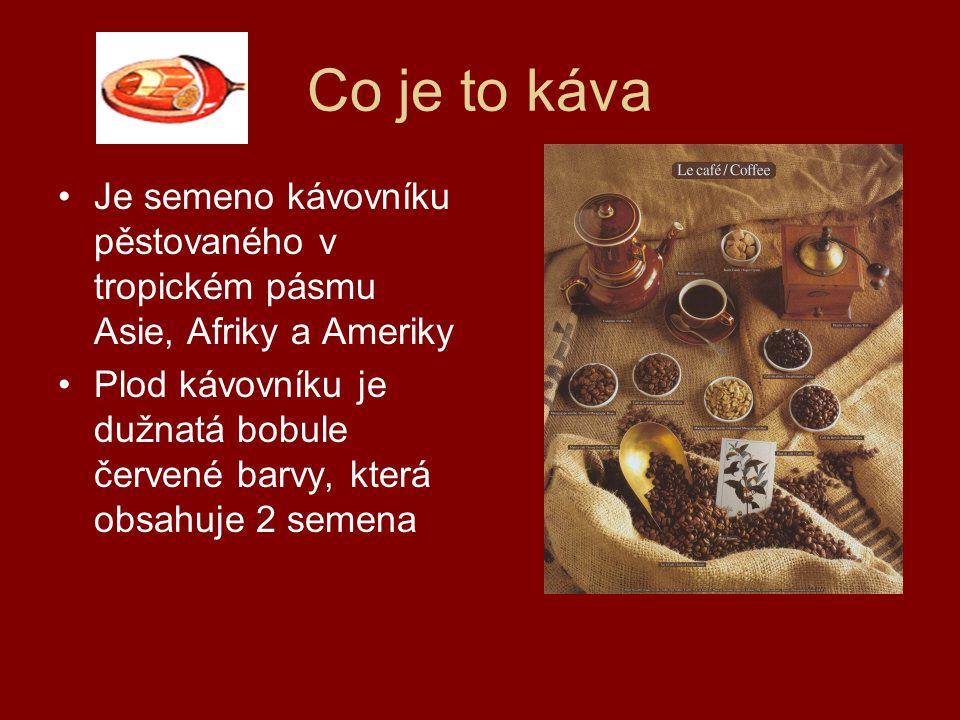 Co je to káva Je semeno kávovníku pěstovaného v tropickém pásmu Asie, Afriky a Ameriky Plod kávovníku je dužnatá bobule červené barvy, která obsahuje