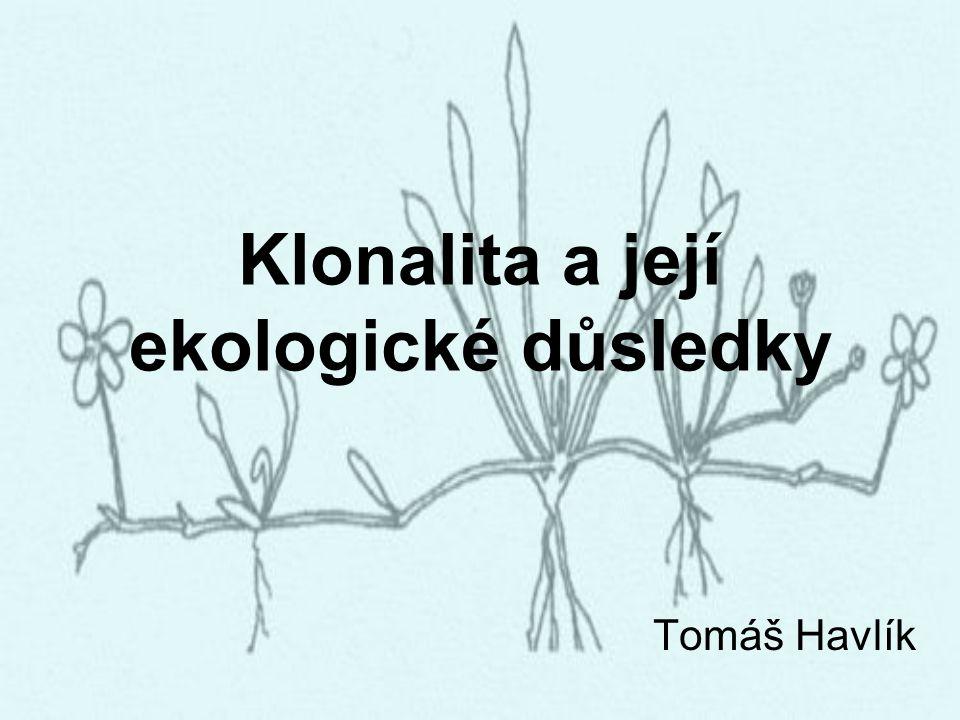 Klonalita a její ekologické důsledky Tomáš Havlík