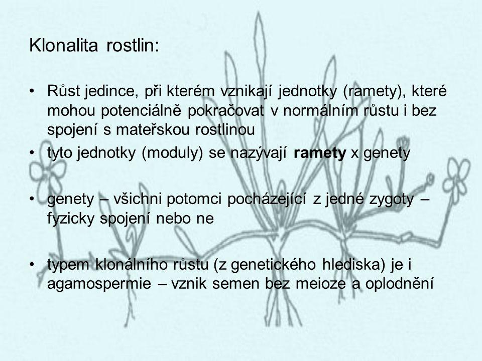Klonalita rostlin: Růst jedince, při kterém vznikají jednotky (ramety), které mohou potenciálně pokračovat v normálním růstu i bez spojení s mateřskou