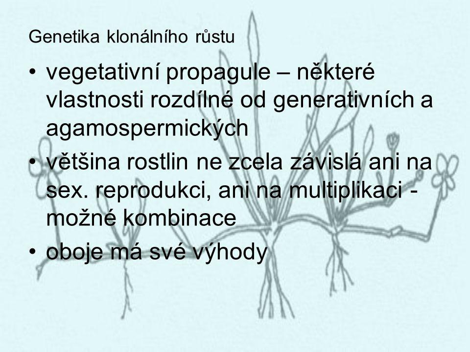 Genetika klonálního růstu vegetativní propagule – některé vlastnosti rozdílné od generativních a agamospermických většina rostlin ne zcela závislá ani