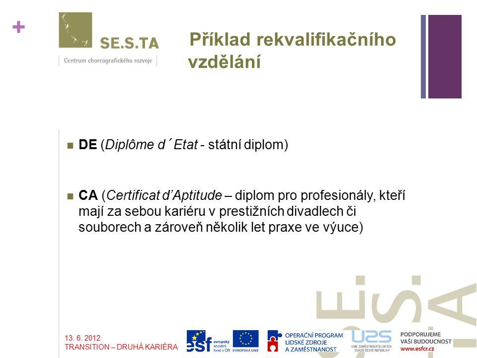 + Příklad rekvalifikačního vzdělání DE (Diplôme d´Etat - státní diplom) CA (Certificat d'Aptitude – diplom pro profesionály, kteří mají za sebou kariéru v prestižních divadlech či souborech a zároveň několik let praxe ve výuce) 13.