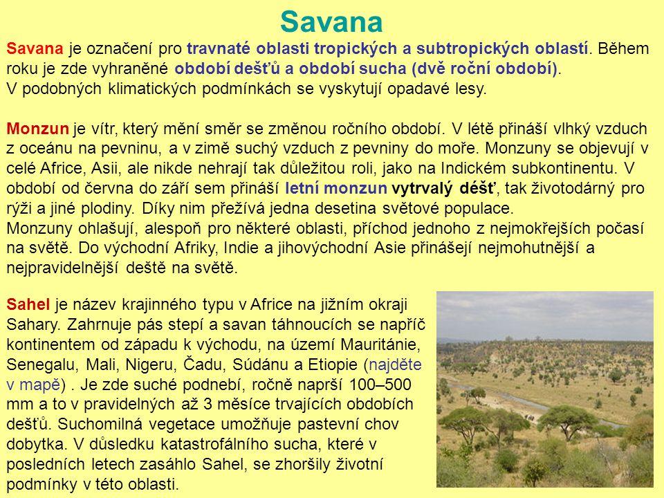 Savana je označení pro travnaté oblasti tropických a subtropických oblastí. Během roku je zde vyhraněné období dešťů a období sucha (dvě roční období)