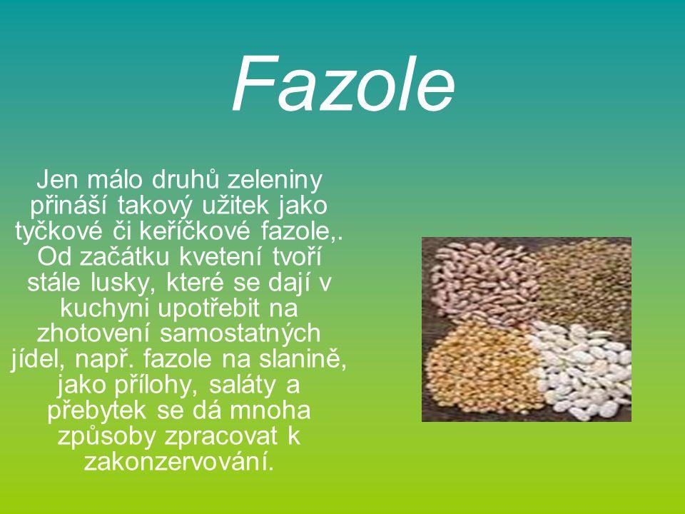 Fazole Jen málo druhů zeleniny přináší takový užitek jako tyčkové či keříčkové fazole,.