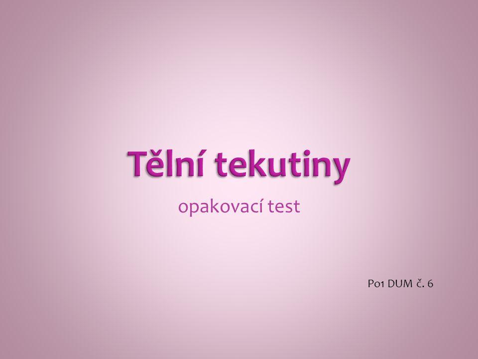 opakovací test Po1 DUM č. 6