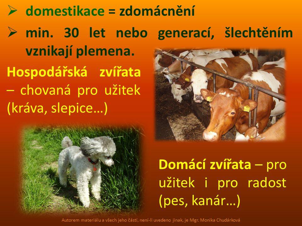  domestikace = zdomácnění  min. 30 let nebo generací, šlechtěním vznikají plemena. Hospodářská zvířata – chovaná pro užitek (kráva, slepice…) Domácí