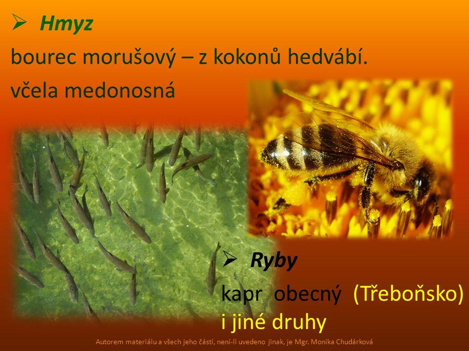  Hmyz bourec morušový – z kokonů hedvábí. včela medonosná  Ryby kapr obecný (Třeboňsko) i jiné druhy Autorem materiálu a všech jeho částí, není-li u