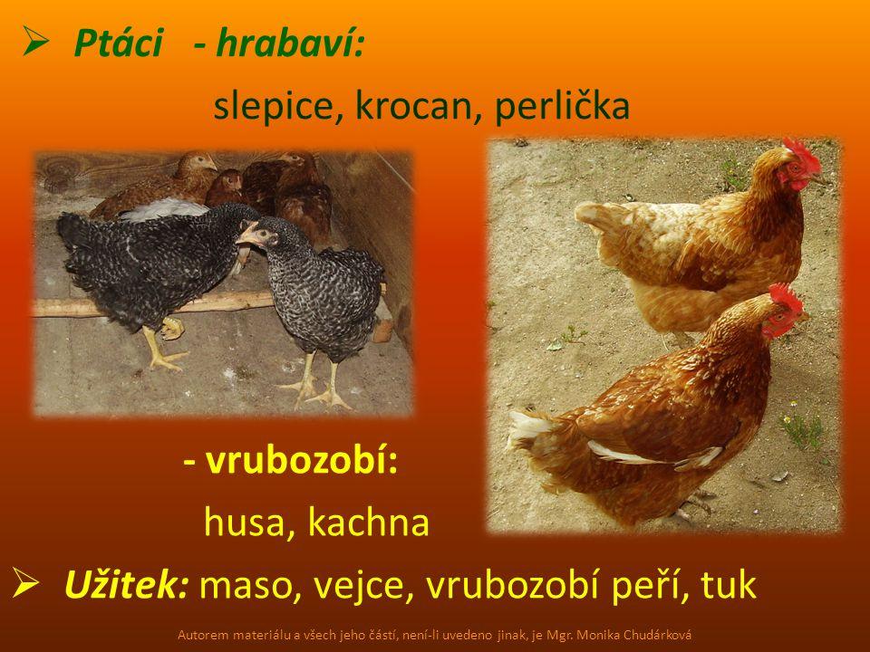  Ptáci - hrabaví: slepice, krocan, perlička - vrubozobí: husa, kachna  Užitek: maso, vejce, vrubozobí peří, tuk Autorem materiálu a všech jeho částí