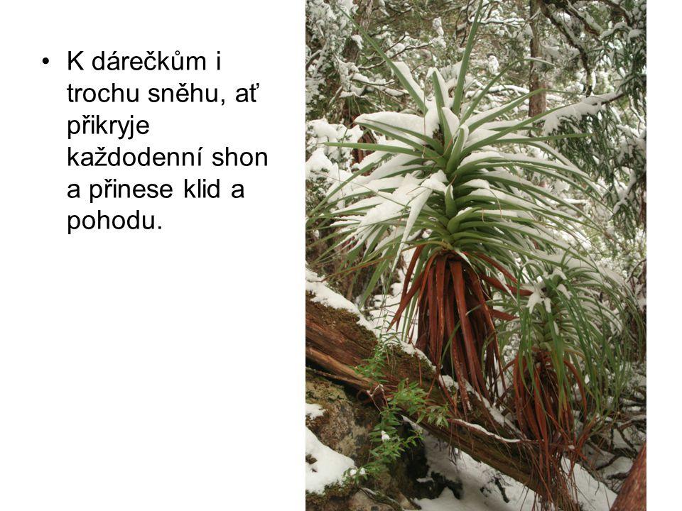 K dárečkům i trochu sněhu, ať přikryje každodenní shon a přinese klid a pohodu.
