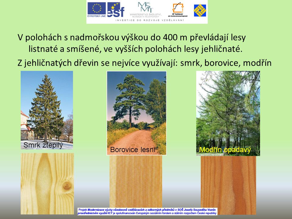 V polohách s nadmořskou výškou do 400 m převládají lesy listnaté a smíšené, ve vyšších polohách lesy jehličnaté. Z jehličnatých dřevin se nejvíce využ