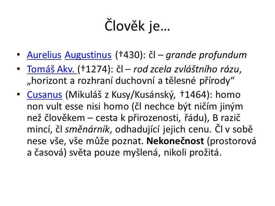 """Člověk je… Aurelius Augustinus (†430): čl – grande profundum AureliusAugustinus Tomáš Akv. (†1274): čl – rod zcela zvláštního rázu, """"horizont a rozhra"""
