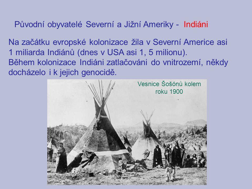 Původní obyvatelé Severní a Jižní Ameriky -Indiáni Na začátku evropské kolonizace žila v Severní Americe asi 1 miliarda Indiánů (dnes v USA asi 1, 5 m