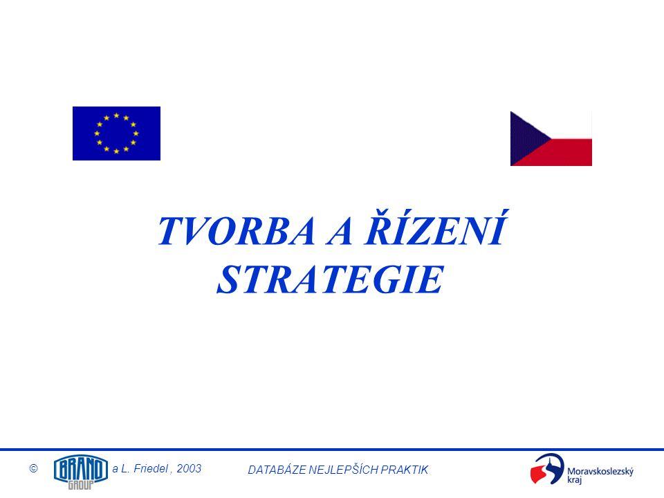 © a L. Friedel, 2003 DATABÁZE NEJLEPŠÍCH PRAKTIK Implementace strategie