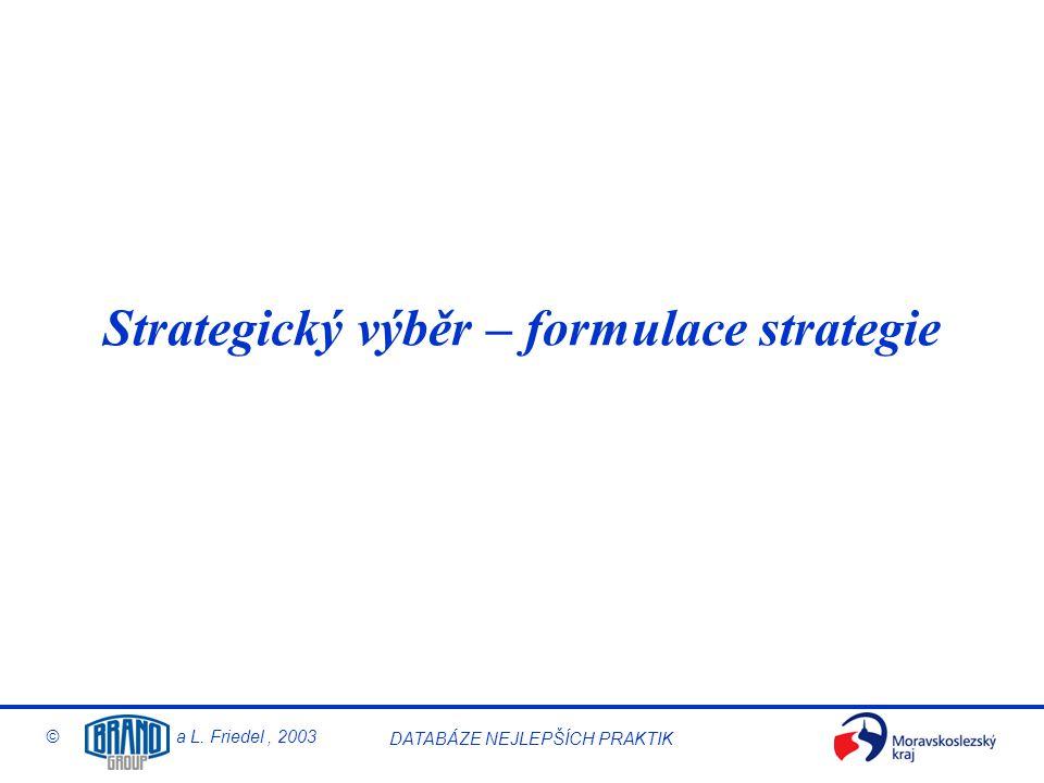 © a L. Friedel, 2003 DATABÁZE NEJLEPŠÍCH PRAKTIK Strategický výběr – formulace strategie